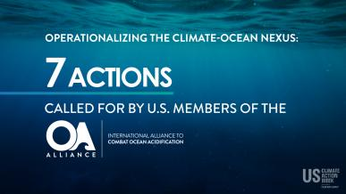 7 actions to combat ocean acidification