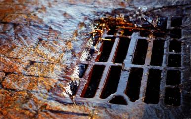Picture of a stormwater drain