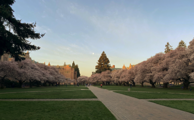 Picture of UW campus for AIA COTE webinar on 5/13/21